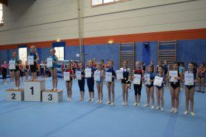 Einzelwettkampf der Turnerinnen @ Turnhalle   Taunusstein   Hessen   Deutschland